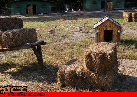 مجوز ۸ طرح جدید گردشگری کشاورزی صادر شد